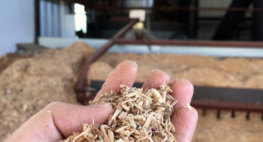 cultiu sostenible a Can Puxic