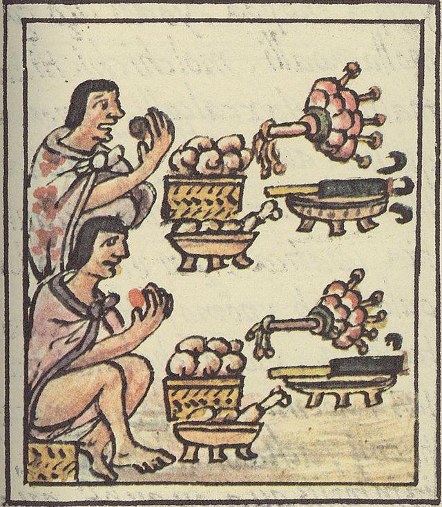 Història del Tomàquet