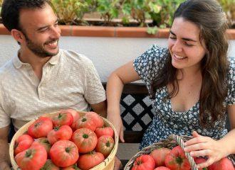 Can Puxic Agricultors Tomàquet Premium Maresme Agricultura